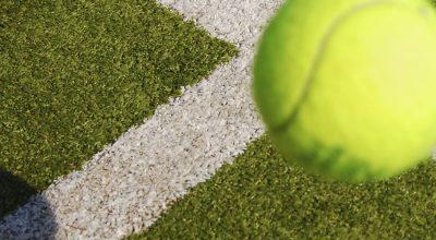 Pasto para Tenis