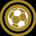 Cumpliendo con todos los requisitos del Programa de FIFA Quality