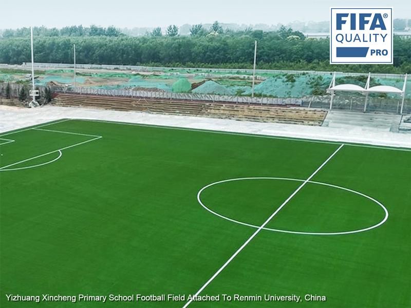 CCGrass, campo de fútbol, campo certificado por la FIFA