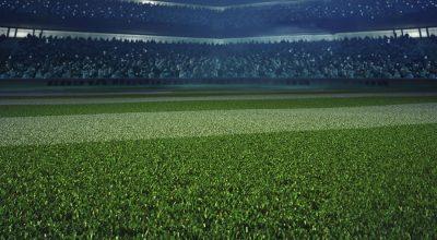 العشب لكرة القدم