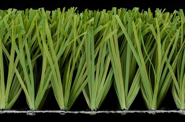 Stemgrass