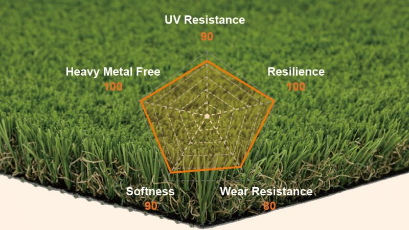 Popular CCGrass Product