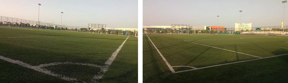 Football Pitches Hunger for Artificial Grass