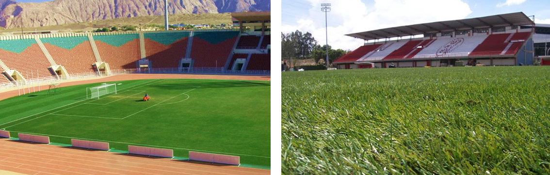 Synthetic Turf; Not Just Cosmetics for Football