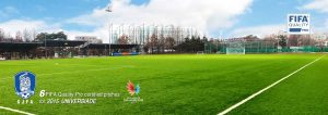ccgrass artificial grass manufacturer Gwangju Football Association
