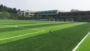 ccgrass artificial grass FIFA football field