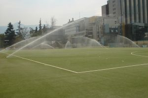 FIH-HF-ccgrass artificial grass FIH preferred supplier hockey certificate China-x