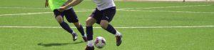 CCGrass FIFA Preferred Producer of football artificial grass fields