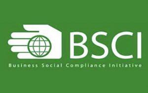 bsci ccgrass artificial grass manufacturer company qualified