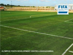 CCGrass artificial grass football FIFA field nature d2