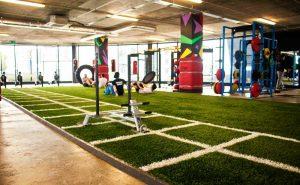 CCGrass-artificial-turf-got-indoor---Ireland