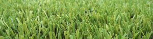 ccgrass Artificial-turf-rugby field-world-rugby-preferred-turf-producer