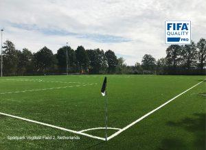 CCGrass artificial grass factory FIFA quality pro football field Sportpark Vegtlust Field 2-Netherlands