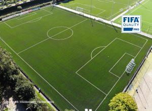 CCGrass artificial grass factory FIFA quality pro football field Sportpark Weidesteen