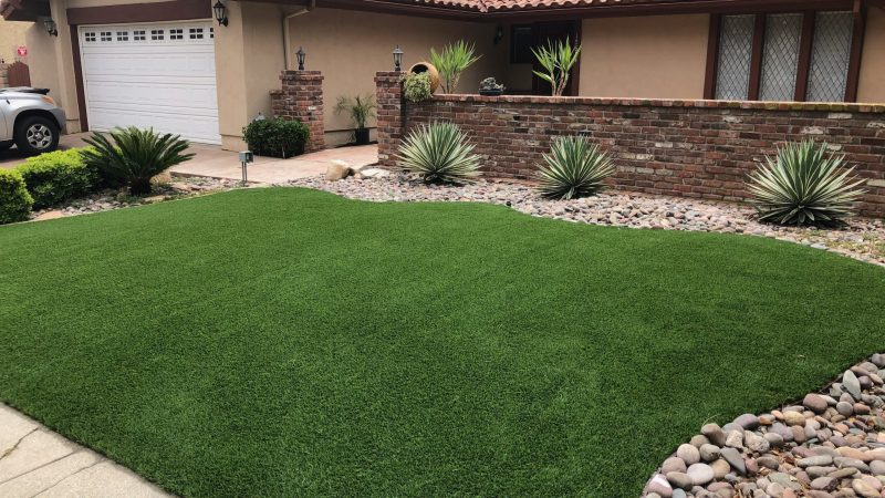 Grass turf for life