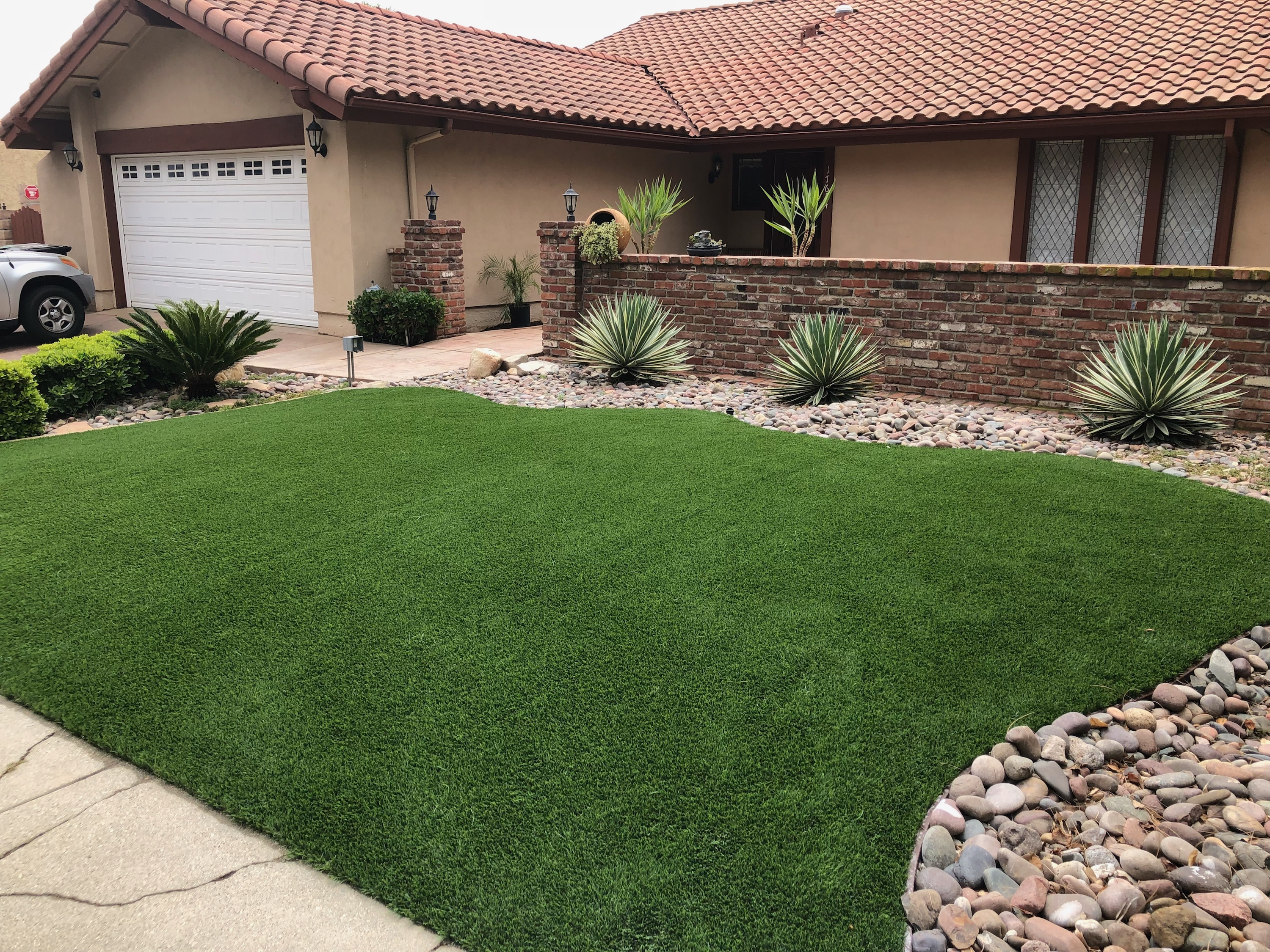 Grass turf for life1