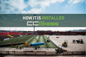 How it is installed-CCGrass