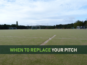 When to replace-CCGrass