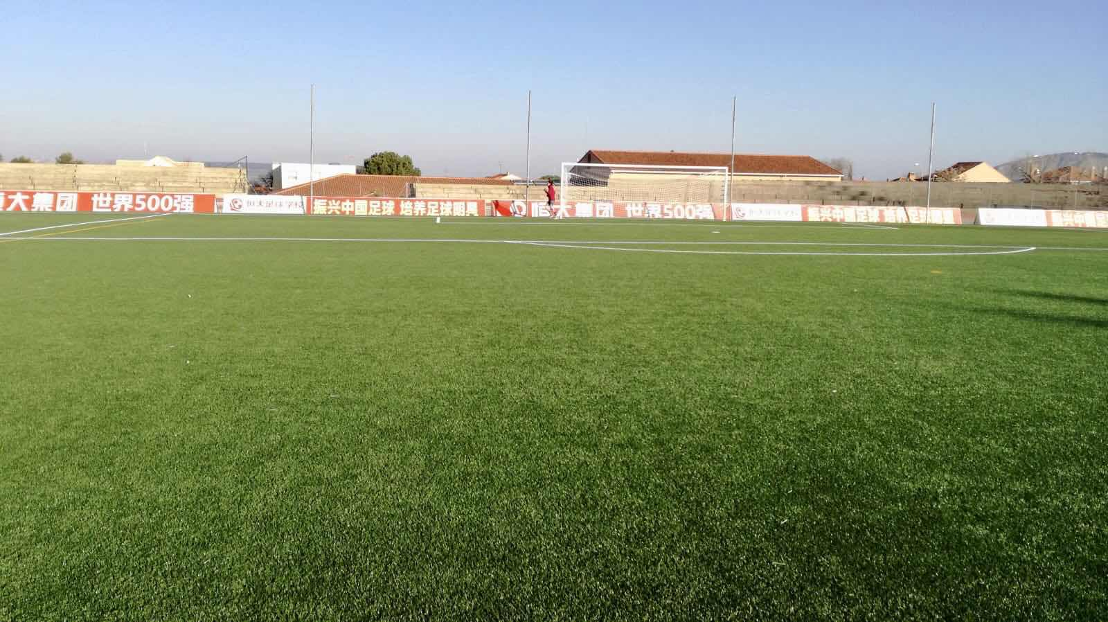 CCGrass, superb synthetic turf factory