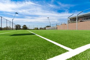 Vital role of surface for tennis grass court