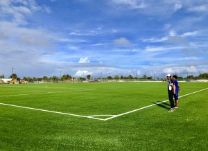 Why artificial grass works
