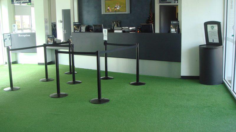 Appealing artificial grass carpet