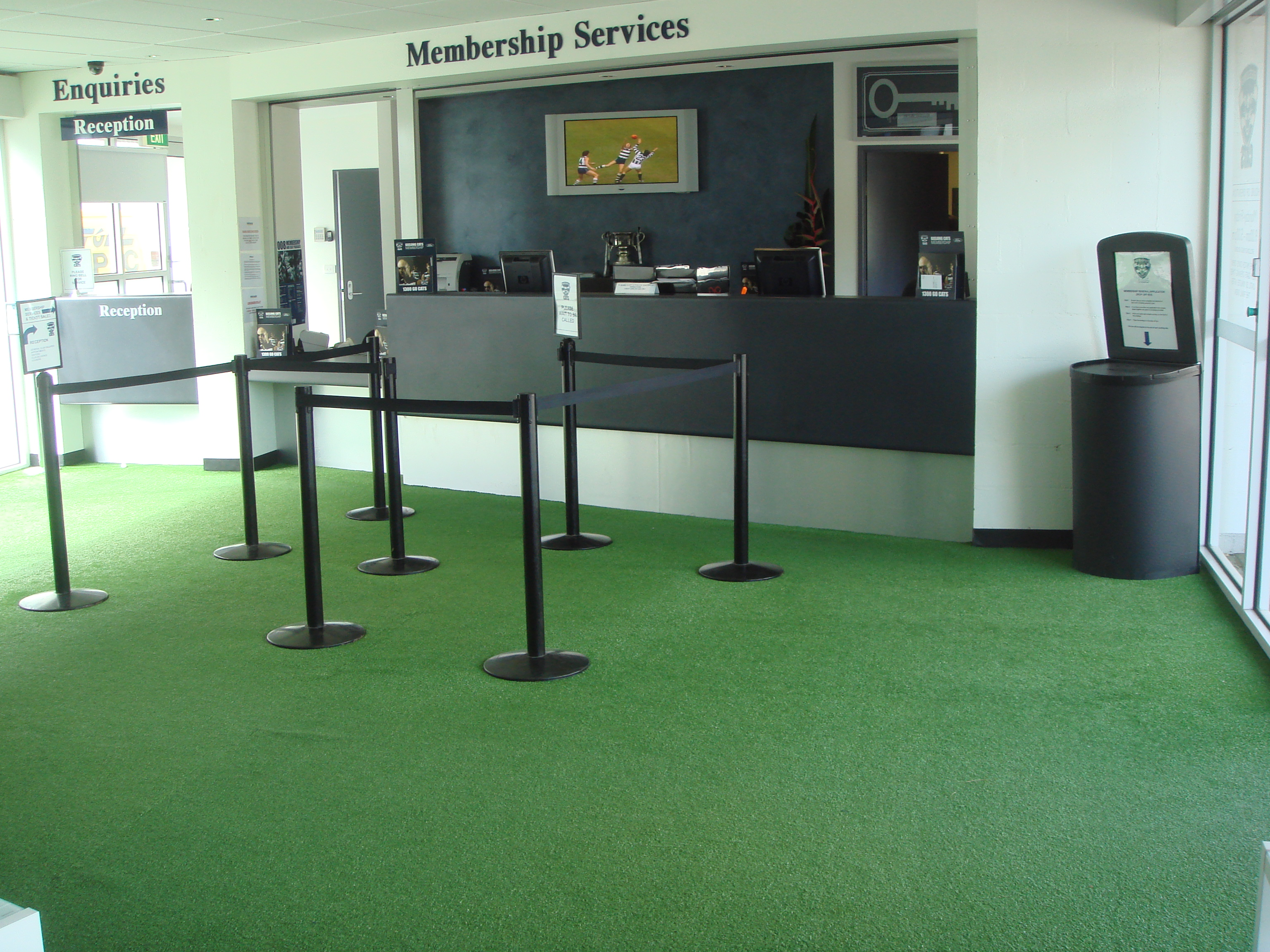 Appealing Artificial Grass Carpet