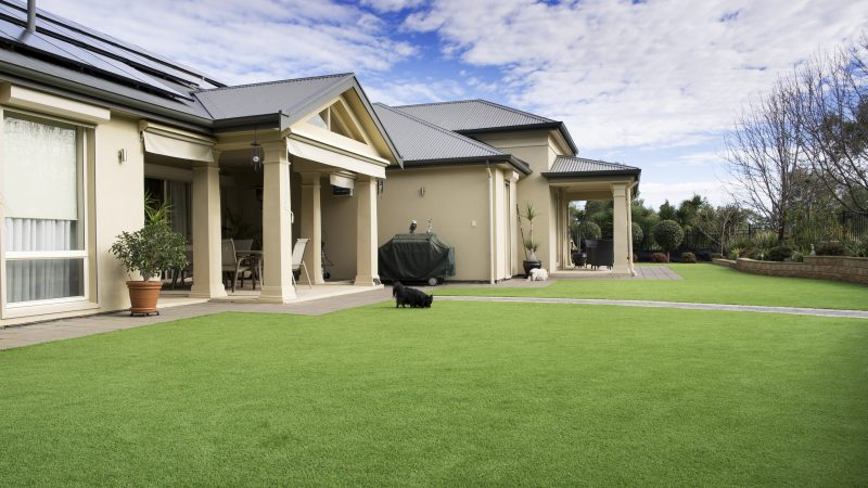 Three types of artificial grass