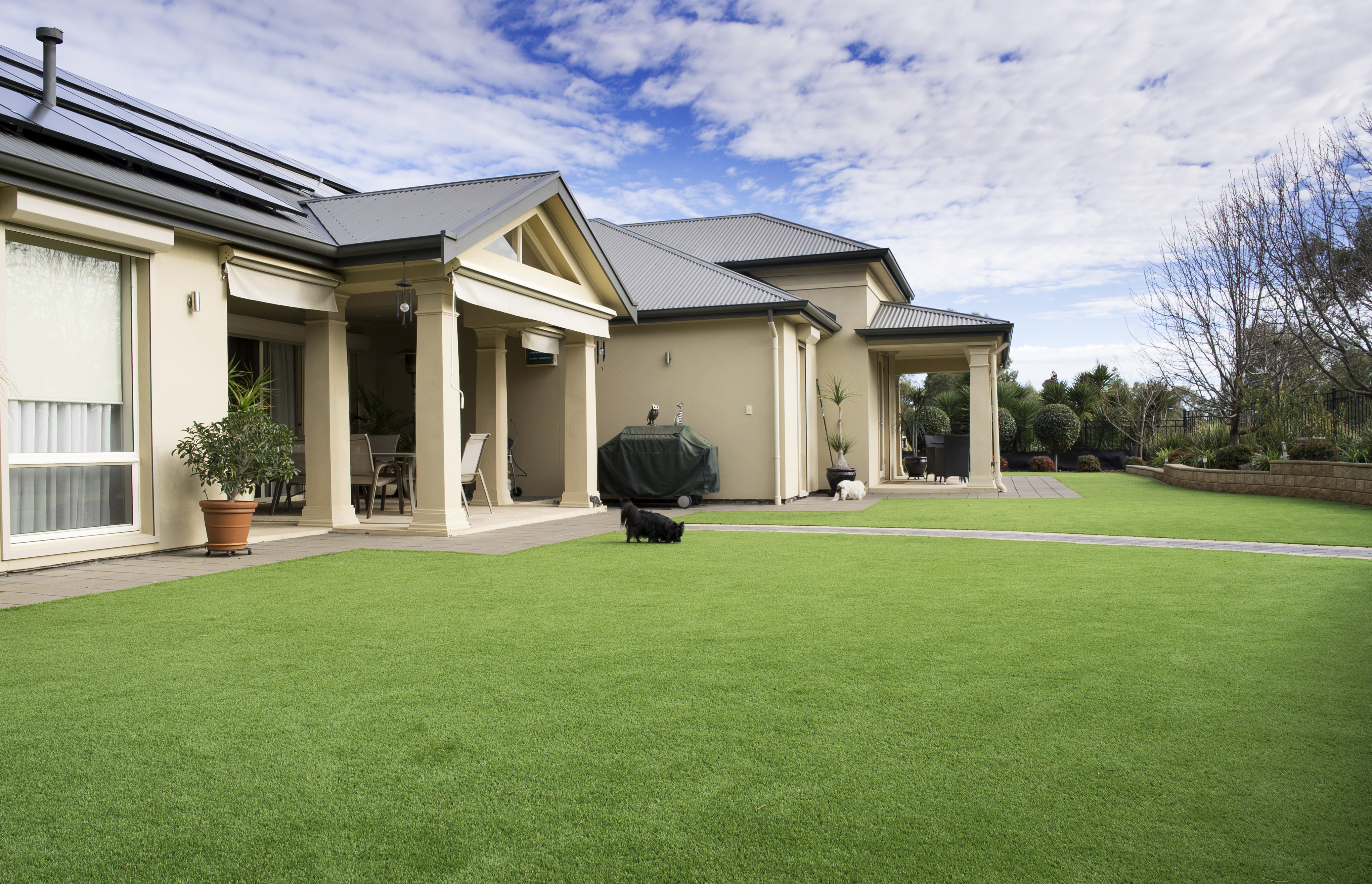 Thress Types of artificial grass