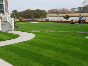 Maintain Artificial Turf