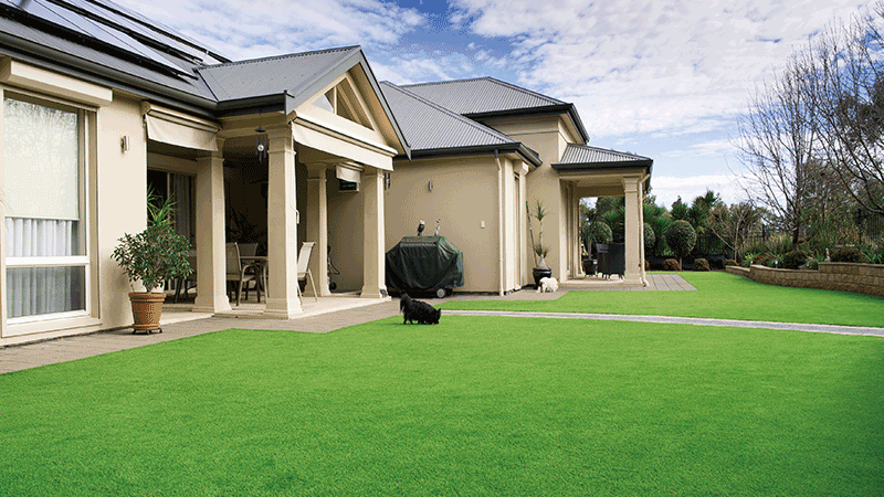 How to maintain artificial turf in garden