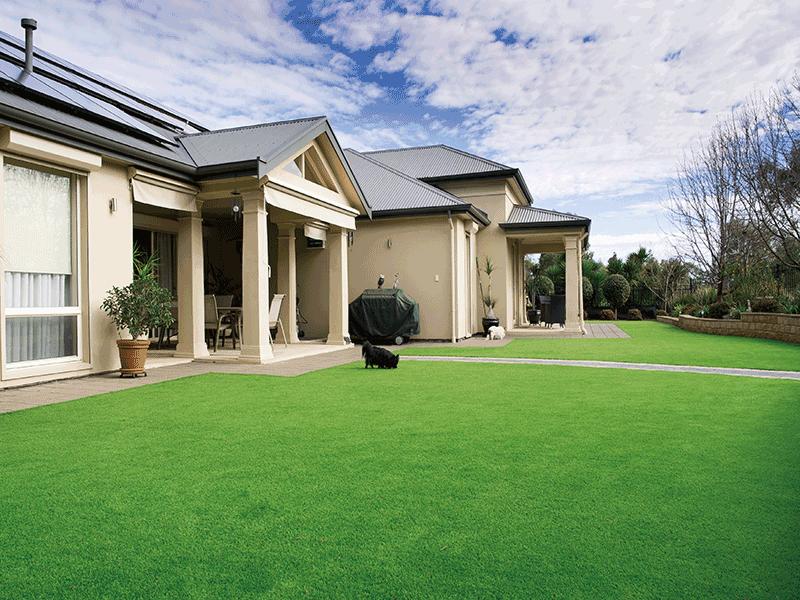 CCGrass, landscape grass, artificial turf for garden