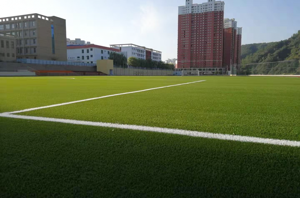 Zhidan County Campus Football Training Field (China, PR)