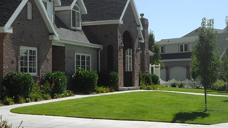 How to choose artificial grass for your home