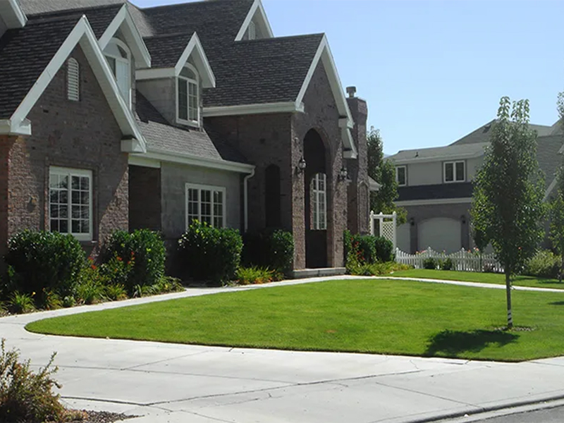 CCGrass, artificial grass for home