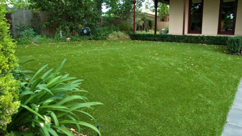 3 reasons artificial lawn are more popular than natural grass