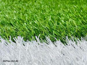 CCGrass artificial grass field in TSV Fortuna in Billigheim, Germany (4)