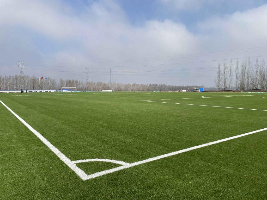 CCGrass,football field,FIFA certificate