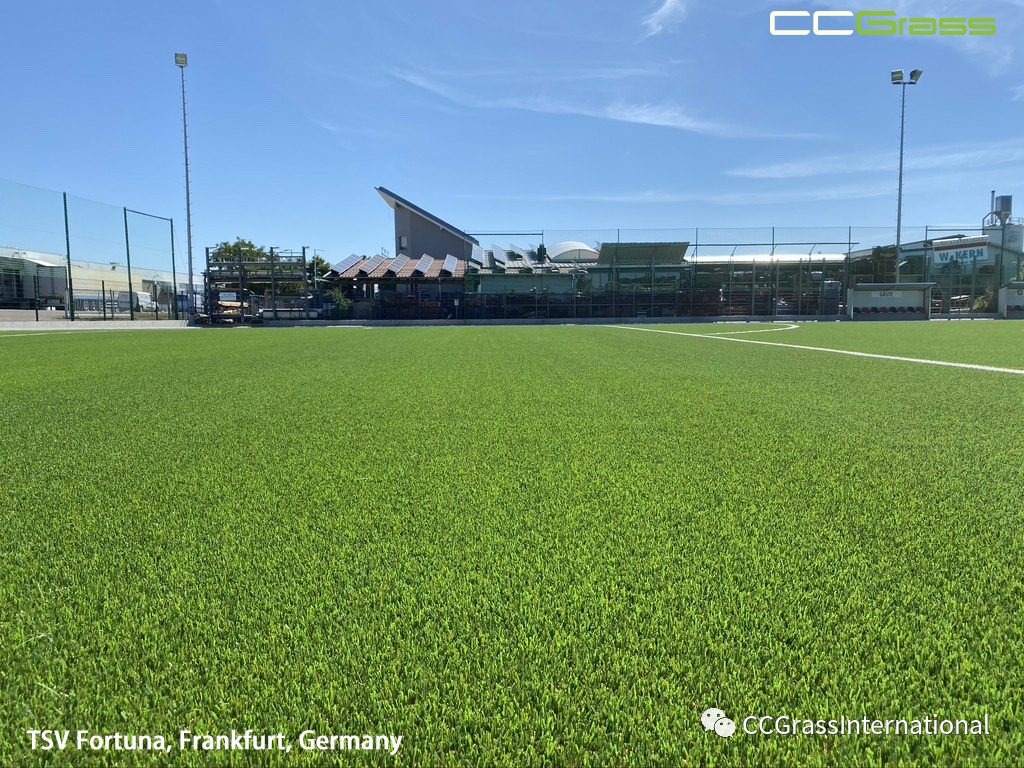 CCGrass, Synthetic Turf Pitches 2