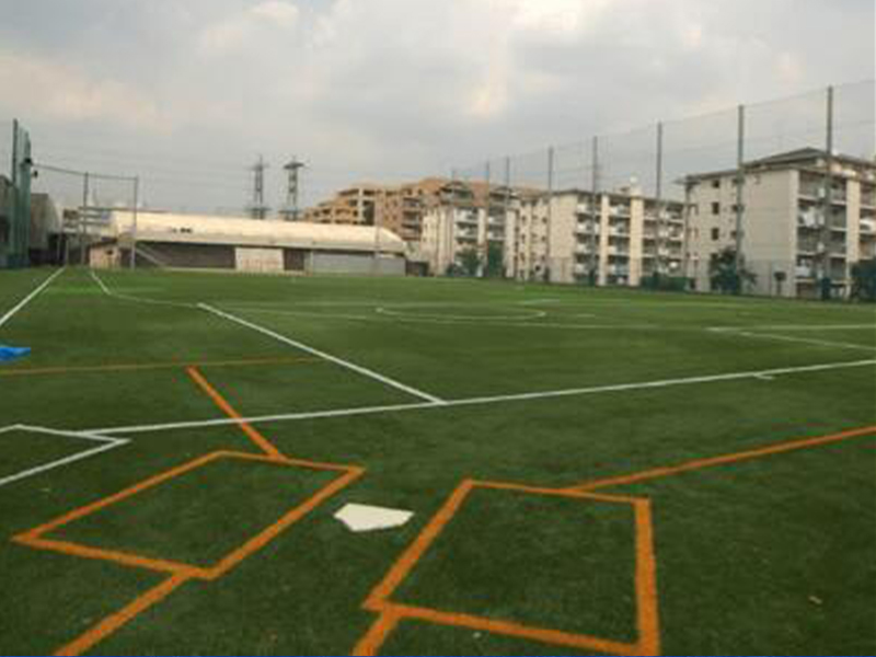coloured turf pitch