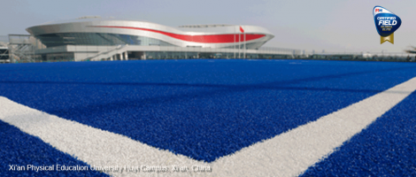 CCGrass won 3 Global Elite level hockey fields, contributing to the Chinese National Games