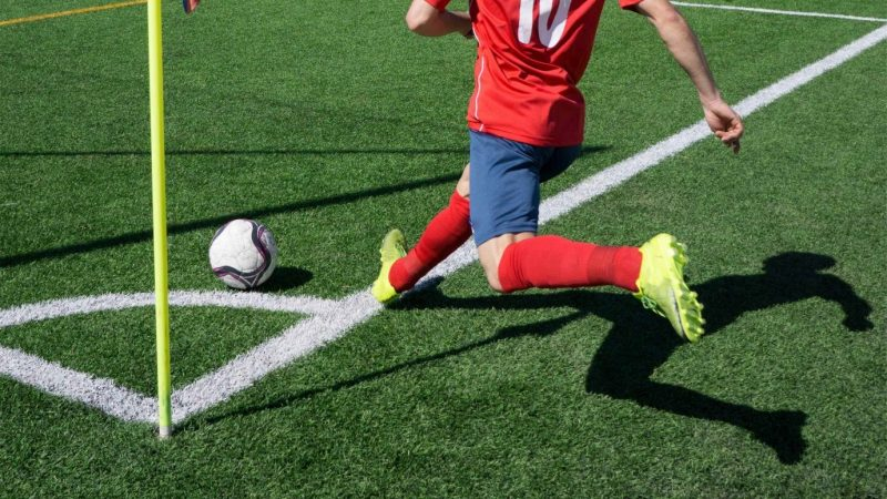 How Long Does Synthetic Grass Last?