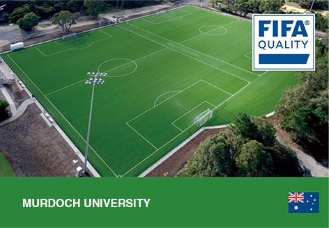 CCGrass, football pitch, Murdoch University, Australia