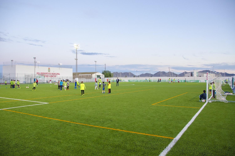 CCGrass, artificial turf field, football pitch