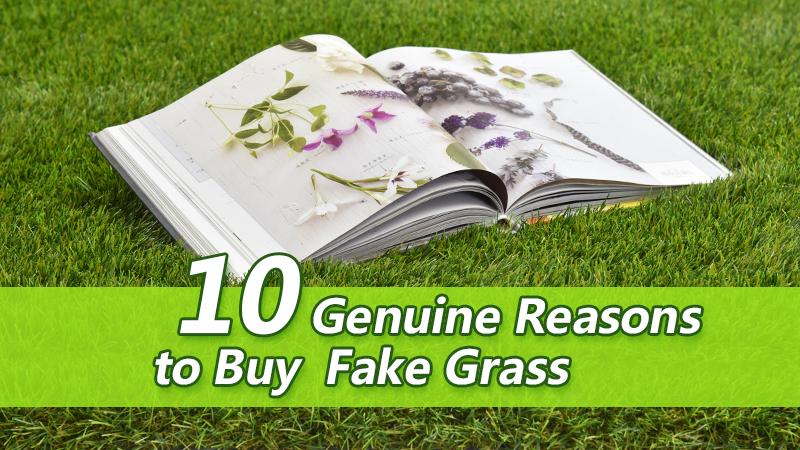 10 Genuine Reasons to Buy Fake Grass