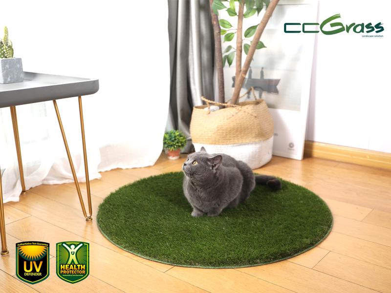 CCGrass, artificial grass for cats, pet mat